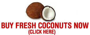 Buy a Coconut Here!