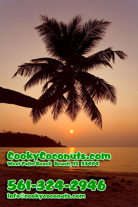 Cooky Coconuts Contact Information